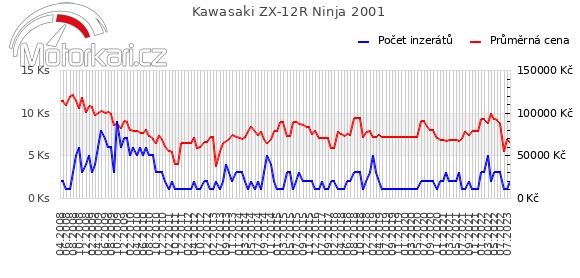 Kawasaki ZX-12R Ninja 2001