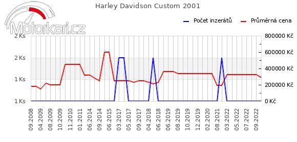 Harley Davidson Custom 2001