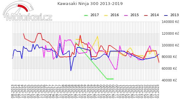 Kawasaki Ninja 300 2013-2019