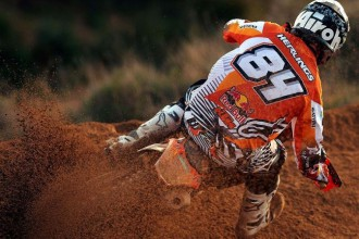 Herlings, Pourc