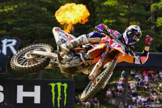 Herlings nakone
