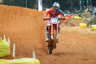 Herlings a Prad